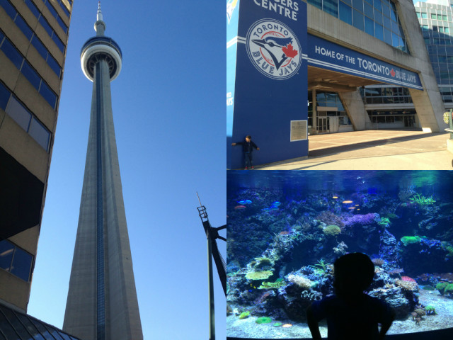 So much to see in one stop! Rogers centre, Cn tower and Ripley's Aquarium of Canada